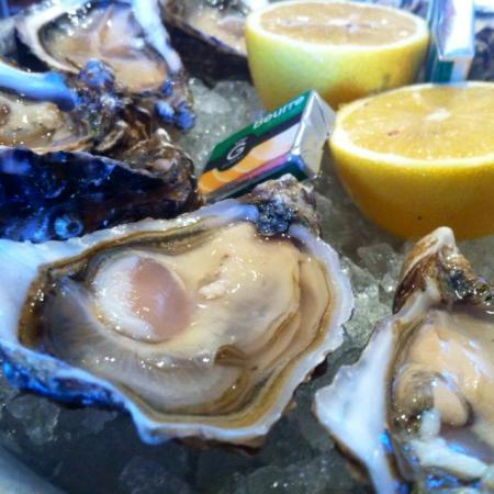 Papin Oysters